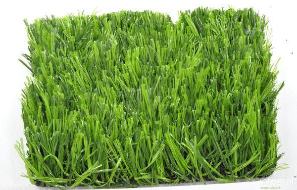 Grass-yapay çim