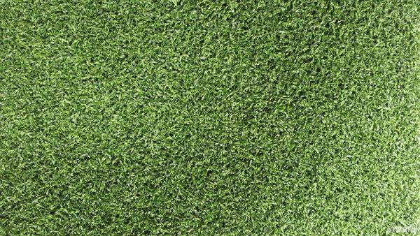 Suni çim çeşitleri